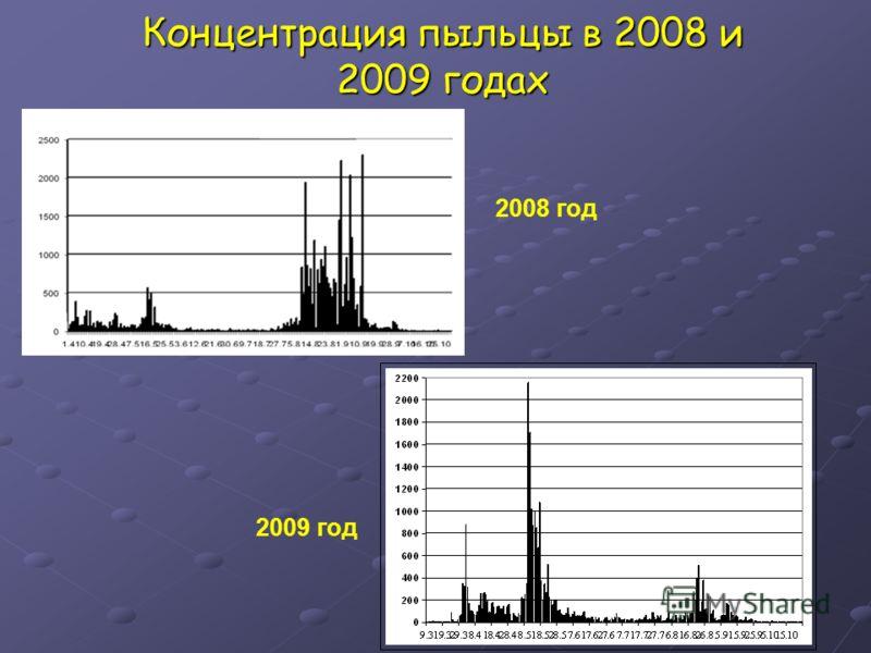 Концентрация пыльцы в 2008 и 2009 годах 2009 год 2008 год