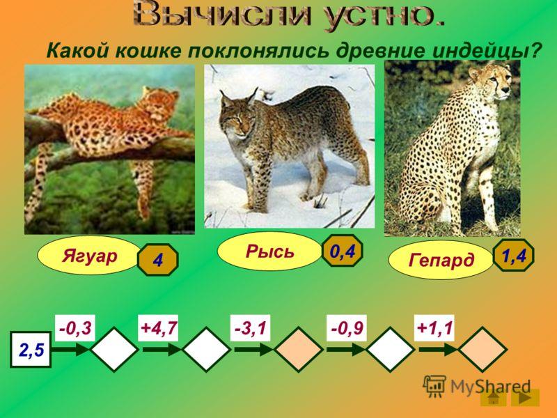 Какой кошке поклонялись древние индейцы? Гепард Ягуар Рысь 2,5 -0,3-3,1-0,9+1,1+4,7 4 1,4 0,4