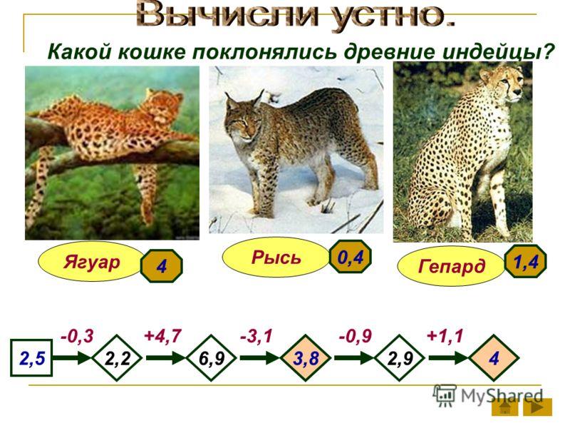 Какой кошке поклонялись древние индейцы? Гепард Ягуар Рысь 2,26,92,9 2,5 -0,3-3,1-0,9+1,1+4,7 3,84 4 1,4 0,4