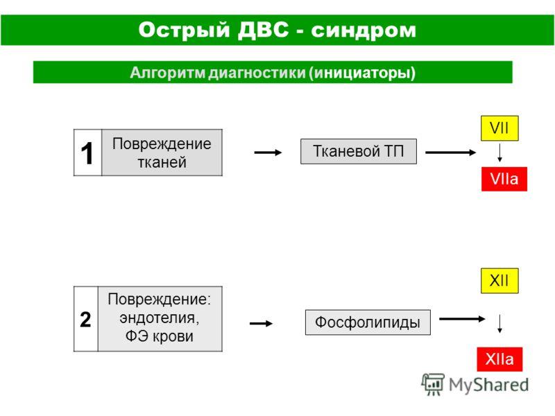 Острый ДВС - синдром Алгоритм диагностики (инициаторы) 1 Повреждение тканей 2 Повреждение: эндотелия, ФЭ крови Тканевой ТП Фосфолипиды VII XII VIIа XIIа