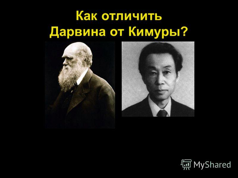 Как отличить Дарвина от Кимуры?