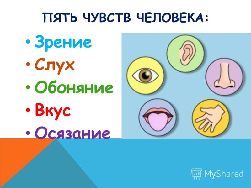 ПЯТЬ ЧУВСТВ ЧЕЛОВЕКА: Зрение Слух Обоняние Вкус Осязание