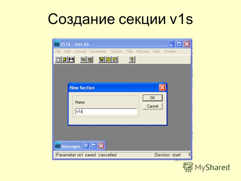 Создание секции v1s