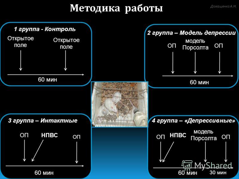 4 группа – «Депрессивные» ОП модель Порсолта НПВС 60 мин 30 мин 3 группа – Интактные ОП НПВС 60 мин 2 группа – Модель депрессии модель Порсолта ОП 60 мин Методика работы 60 мин 1 группа - Контроль Открытое поле Домащенко А.Н.