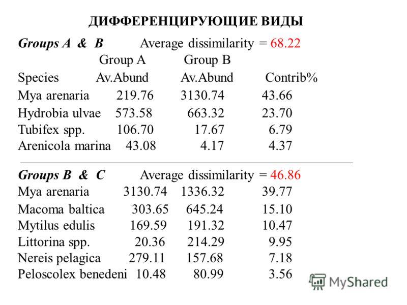 ДИФФЕРЕНЦИРУЮЩИЕ ВИДЫ Groups A & BAverage dissimilarity = 68.22 Group A Group B Species Av.Abund Av.Abund Contrib% Mya arenaria 219.76 3130.74 43.66 Hydrobia ulvae 573.58 663.32 23.70 Tubifex spp. 106.70 17.67 6.79 Arenicola marina 43.08 4.17 4.37 Gr