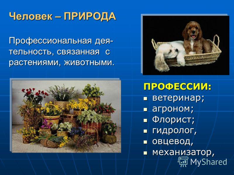 Человек – ПРИРОДА Профессиональная дея- тельность, связанная с растениями, животными. ПРОФЕССИИ: ветеринар; ветеринар; агроном; агроном; Флорист; Флорист; гидролог, гидролог, овцевод, овцевод, механизатор, механизатор,