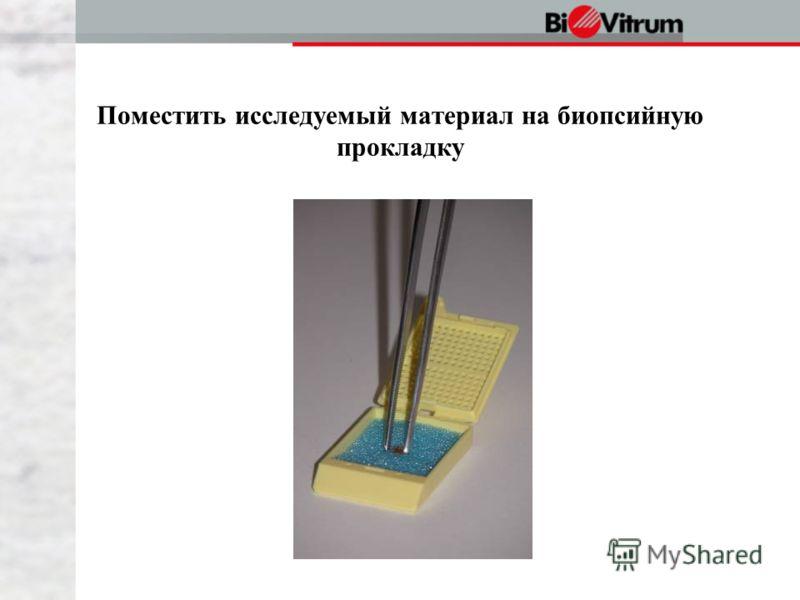 Поместить исследуемый материал на биопсийную прокладку