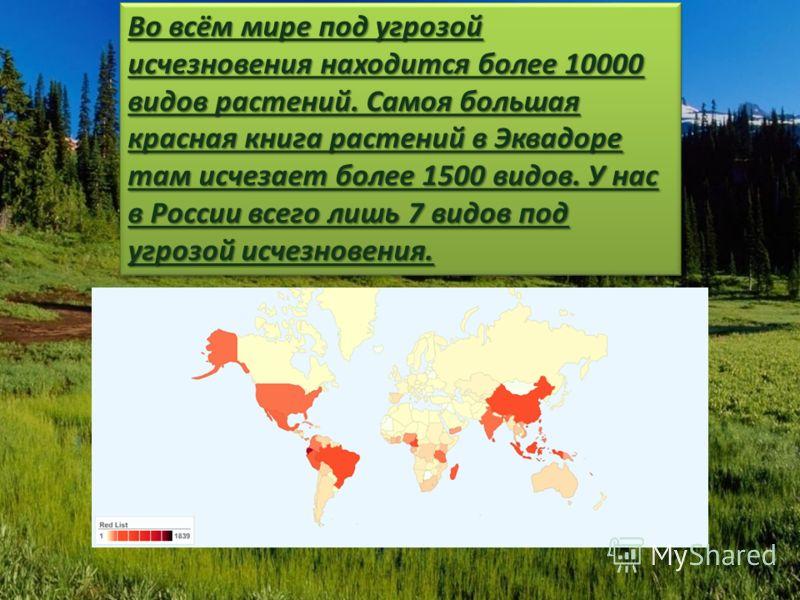 Во всём мире под угрозой исчезновения находится более 10000 видов растений. Самоя большая красная книга растений в Эквадоре там исчезает более 1500 видов. У нас в России всего лишь 7 видов под угрозой исчезновения.