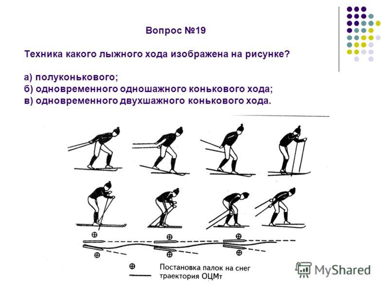 Вопрос 19 Техника какого лыжного хода изображена на рисунке? а) полуконькового; б) одновременного одношажного конькового хода; в) одновременного двухшажного конькового хода.