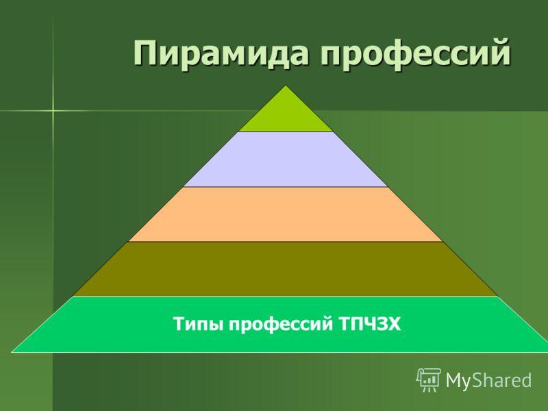 Пирамида профессий Типы профессий ТПЧЗХ