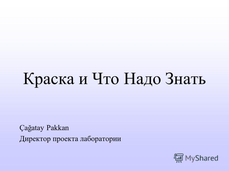Краска и Что Надо Знать Çağatay Pakkan Директор проекта лаборатории