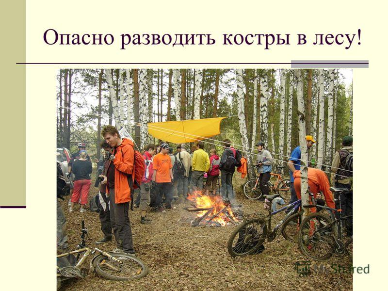 Опасно разводить костры в лесу!