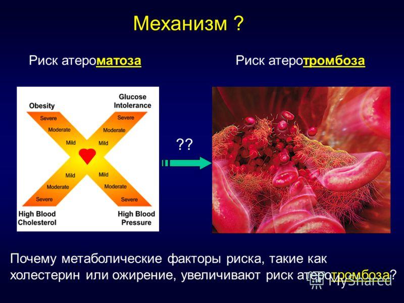 Риск атероматозаРиск атеротромбоза ?? Механизм ? Почему метаболические факторы риска, такие как холестерин или ожирение, увеличивают риск атеротромбоза?