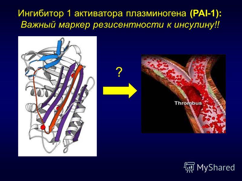 Ингибитор 1 активатора плазминогена (PAI-1): Важный маркер резисентности к инсулину!! ?