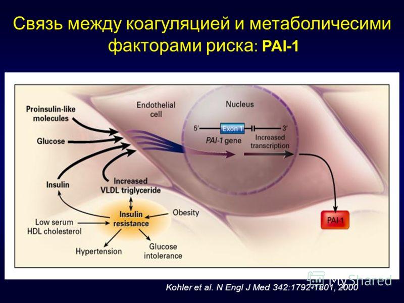 Связь между коагуляцией и метаболичесими факторами риска : PAI-1 Kohler et al. N Engl J Med 342:1792-1801, 2000