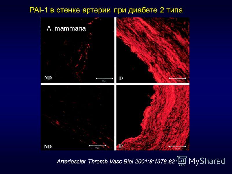 PAI-1 в стенке артерии при диабете 2 типа A. mammaria Arterioscler Thromb Vasc Biol 2001;8:1378-82