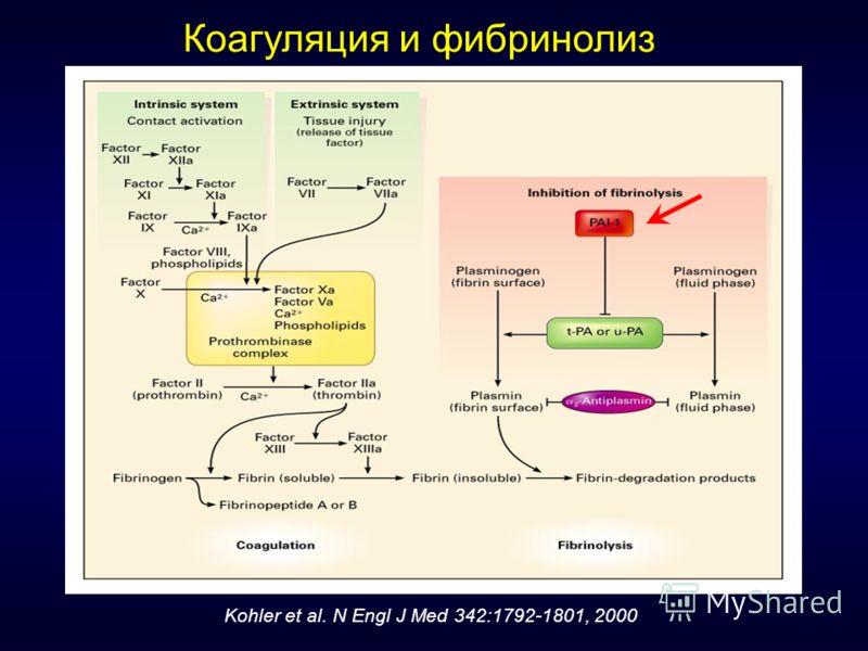 Коагуляция и фибринолиз Kohler et al. N Engl J Med 342:1792-1801, 2000