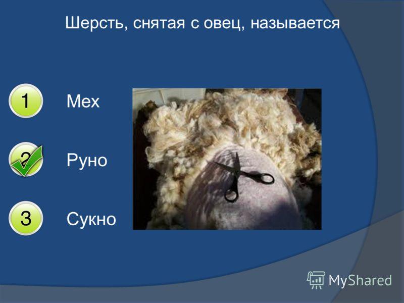 Шерсть, снятая с овец, называется Мех Руно Сукно