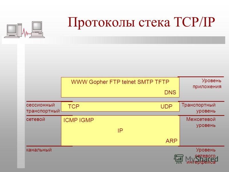 Протоколы стека TCP/IP ICMP IGMP IP ARP TCP UDP канальный сетевой сессионный транспортный Уровень сетевого интерфейса Межсетевой уровень Транспортный уровень WWW Gopher FTP telnet SMTP TFTP DNS Уровень приложения