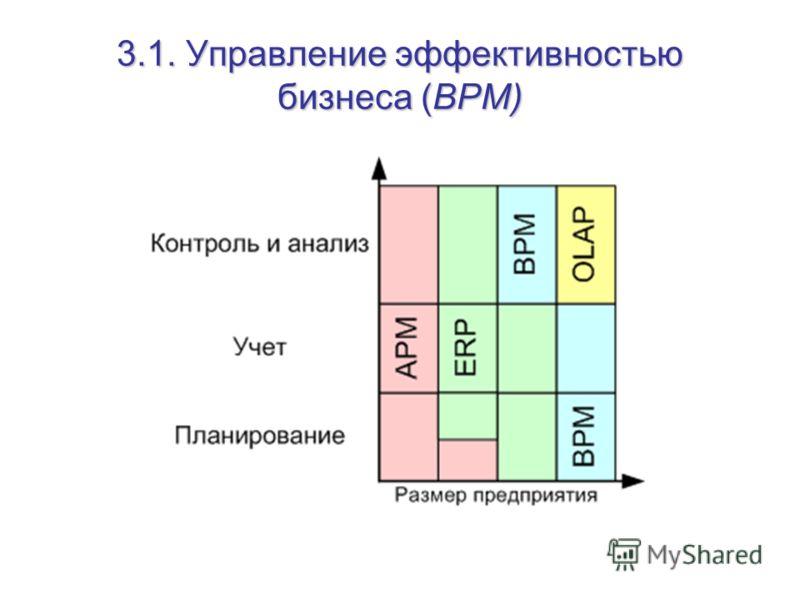 3.1. Управление эффективностью бизнеса (BPM)