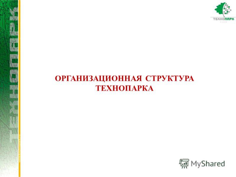 ОРГАНИЗАЦИОННАЯ СТРУКТУРА ТЕХНОПАРКА
