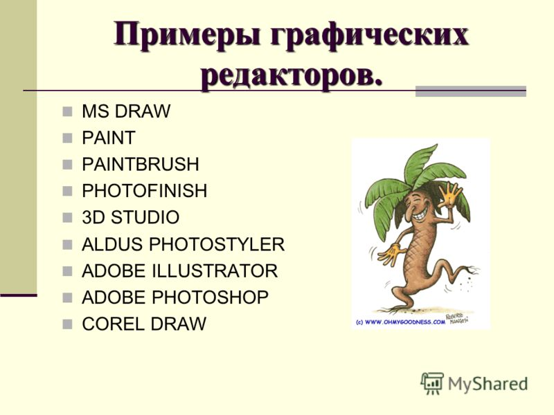 Примеры графических редакторов. MS DRAW PAINT PAINTBRUSH PHOTOFINISH 3D STUDIO ALDUS PHOTOSTYLER ADOBE ILLUSTRATOR ADOBE PHOTOSHOP COREL DRAW