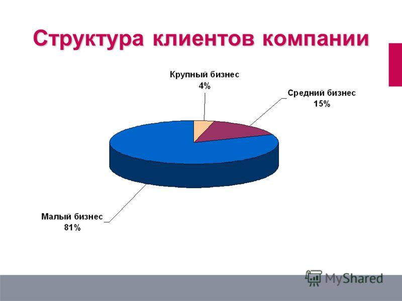 Структура клиентов компании