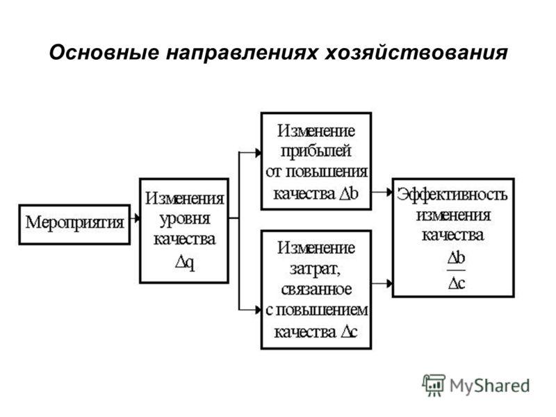 Основные направлениях хозяйствования