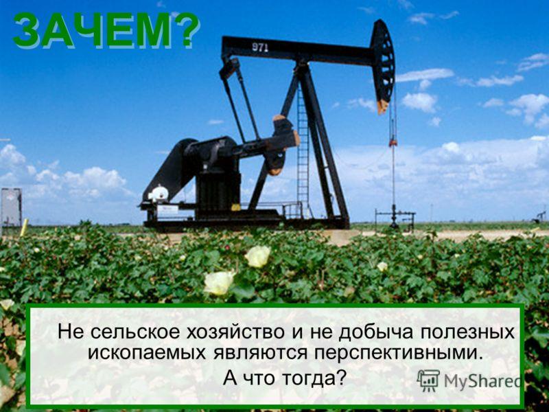 ЗАЧЕМ? Не сельское хозяйство и не добыча полезных ископаемых являются перспективными. А что тогда?