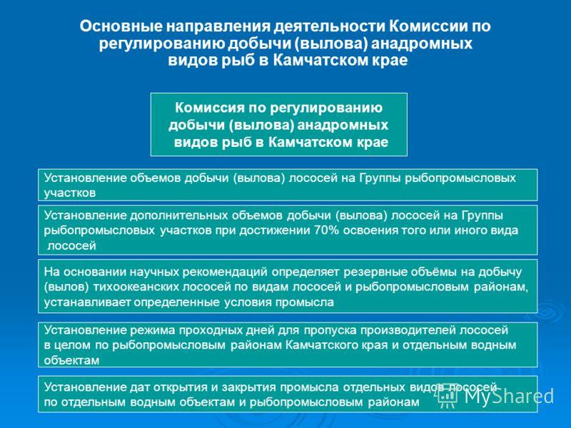 Основные направления деятельности Комиссии по регулированию добычи (вылова) анадромных видов рыб в Камчатском крае Комиссия по регулированию добычи (вылова) анадромных видов рыб в Камчатском крае Установление объемов добычи (вылова) лососей на Группы