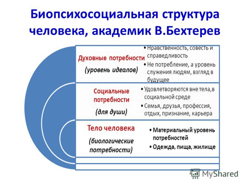 Биопсихосоциальная структура человека, академик В.Бехтерев