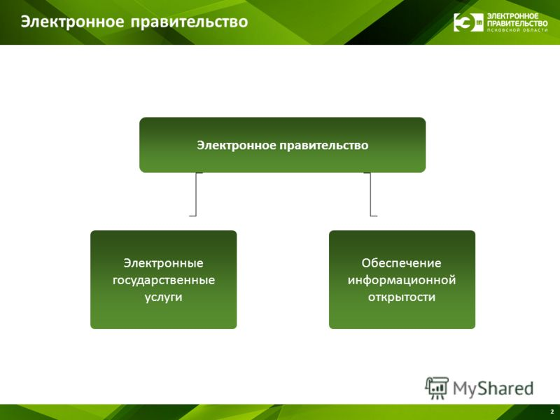 2 Электронное правительство Обеспечение информационной открытости Электронные государственные услуги