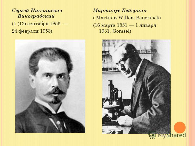 Сергей Николаевич Виноградский (1 (13) сентября 1856 24 февраля 1953) Мартинус Бейеринк ( Martinus Willem Beijerinck) (16 марта 1851 1 января 1931, Gorssel)