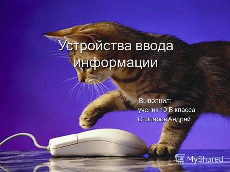 Устройства ввода информации Выполнил: ученик 10 В класса ученик 10 В класса Столяров Андрей Столяров Андрей
