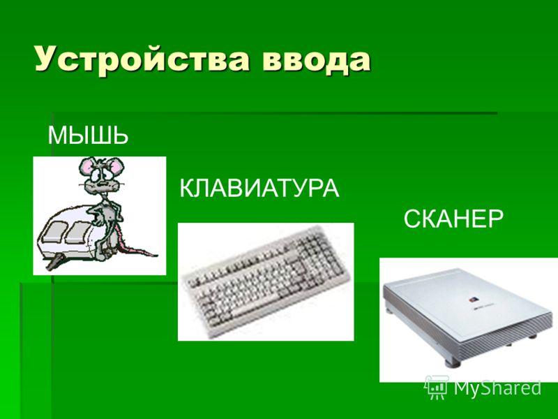 Устройства ввода МЫШЬ КЛАВИАТУРА СКАНЕР