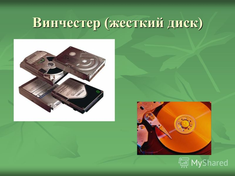 Винчестер (жесткий диск) Группа металлических пластин, герметично упакованных вместе с устройством считывания/записи. Служит для хранения информации непосредственно на компьютере. Может иметь большой объём. дддд аааа лллл ееее ееее