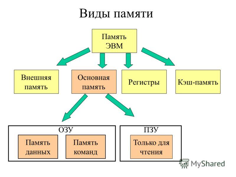 Виды памяти Основная память Регистры Внешняя память Память данных Память команд ОЗУПЗУ Только для чтения Память ЭВМ Кэш-память