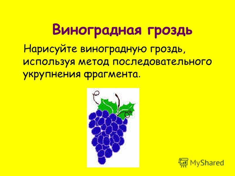 Виноградная гроздь Нарисуйте виноградную гроздь, используя метод последовательного укрупнения фрагмента.