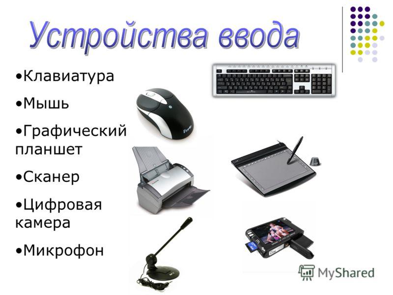 Клавиатура Мышь Графический планшет Сканер Цифровая камера Микрофон