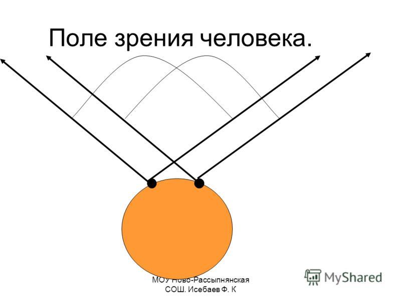 Поле зрения человека.