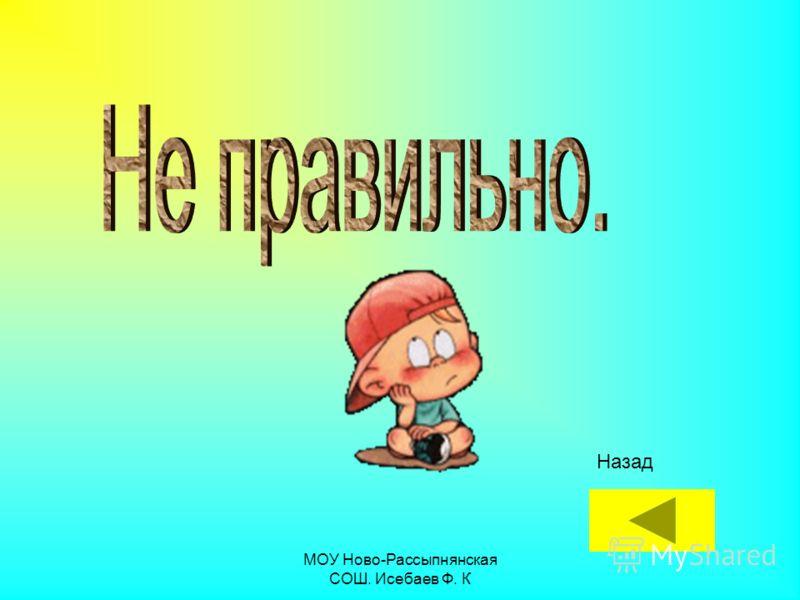 МОУ Ново-Рассыпнянская СОШ. Исебаев Ф. К Назад