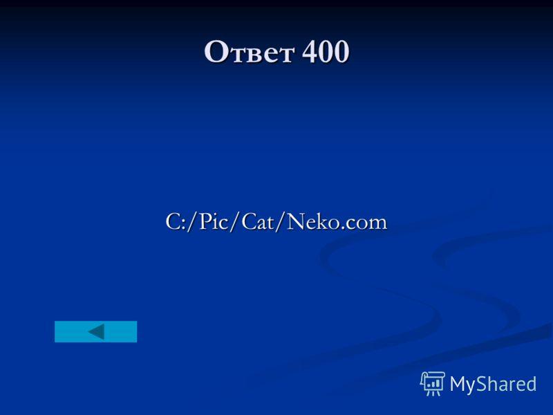 Ответ 400 C:/Pic/Cat/Neko.com