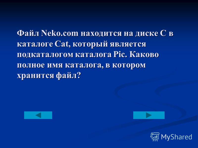 Файл Neko.com находится на диске С в каталоге Cat, который является подкаталогом каталога Pic. Каково полное имя каталога, в котором хранится файл?