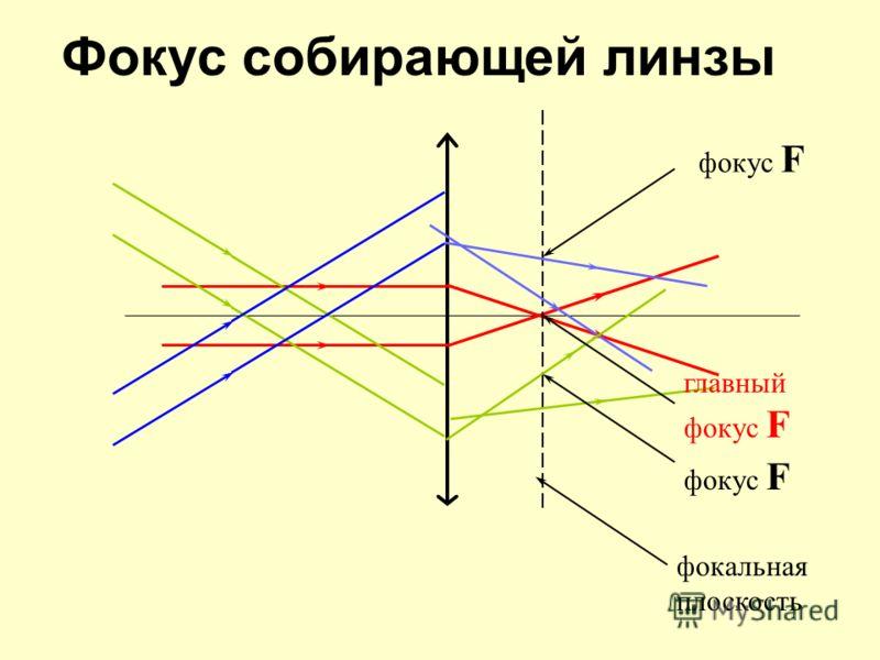 Фокус собирающей линзы фокальная плоскость фокус F главный фокус F