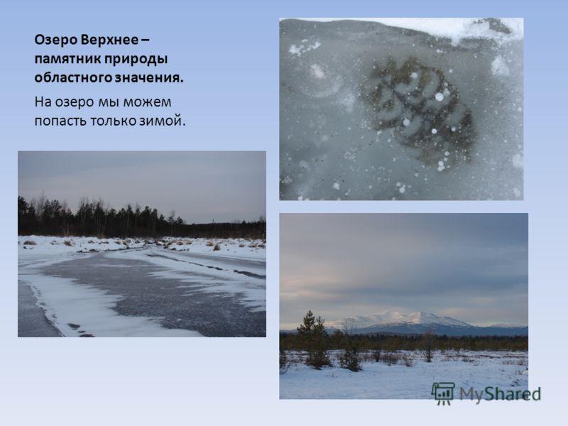Озеро Верхнее – памятник природы областного значения. На озеро мы можем попасть только зимой.