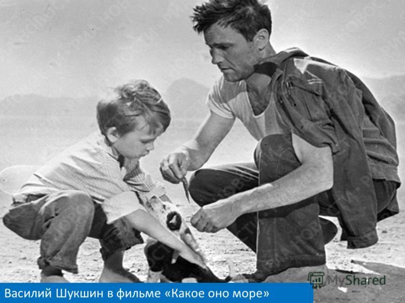 Василий Шукшин в фильме «Какое оно море»