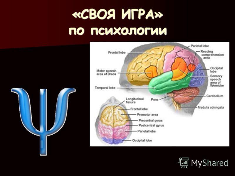 «СВОЯ ИГРА» <a href='http://www.myshared.ru/theme/prezentatsii-po-psihologii/' title='по психологии'>по психологии</a>