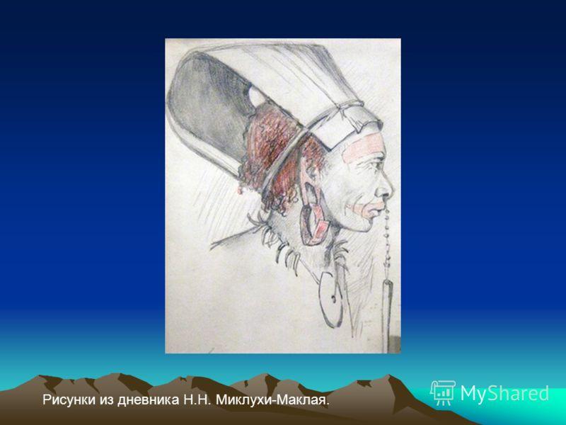 Рисунки из дневника Н.Н. Миклухи-Маклая.