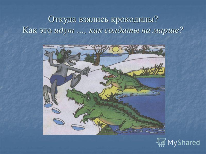 Откуда взялись крокодилы? Как это идут …, как солдаты на марше?