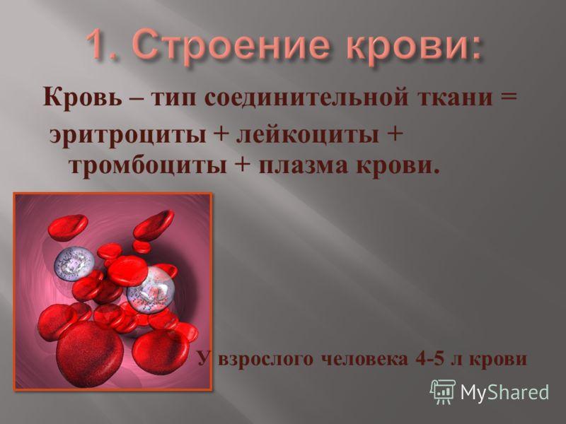 Кровь – тип соединительной ткани = эритроциты + лейкоциты + тромбоциты + плазма крови. У взрослого человека 4-5 л крови